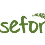 Asefor