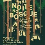 Unha noite no Bosque
