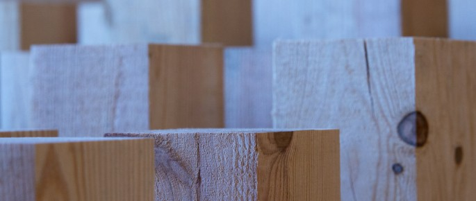 Artesáns da madeira: as novas xeracións